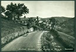 CARTOLINA - CV1741 ARCIDOSSO (Grosseto GR) Panorama, FG, Viaggiata 1955, Piccolo Strappo Riparato, Buone Condizioni - Grosseto