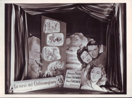 Manifesto Film Le Nevi Del Kilimangiaro,    In Cinema Di Bologna  Foto 1952 - Posters