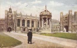 """Trinity College. Old Court.Cambridge"" Tuck Oilette Posttcard # 7150 - Tuck, Raphael"