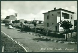 CARTOLINA - CV1735 BORGO CARIGE (Grosseto GR) Panorama, FG, Viaggiata 1963, Ottime Condizioni - Grosseto