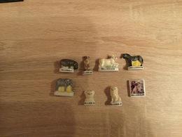 Lot De 8 Feves MIA LE LION BLANC - Charms