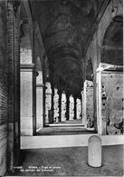 ROMA - Fuga Di Arcate Nei Corridoi Del Colosseo - Colisée - Coliseum - Colisée