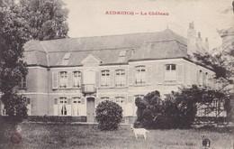 AUDRUICQ - Le Château - Audruicq