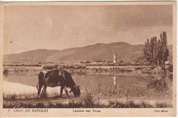 LAGO DE BANOLAS  Laguna Del Vilar - Non Classés
