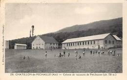 Châtillon De Ou En Michaille Canton Bellegarde Colonie De Pré Jeantet Michaux 230 - Autres Communes