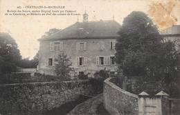 Châtillon De Ou En Michaille Canton Bellegarde Michaux 207 Hôpital - Autres Communes
