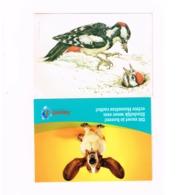 Lot De 8 Cartes.Animaux.Oiseaux,Zèbre. - Animals