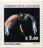 Lote A451, El Salvador, 1995, Sello, Stamp, 12 V, Orquidea, Orchid - El Salvador