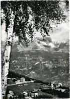 VANEZE DI BONDONE  TRENTO  Panorama Con Cima Tosa E Gruppo Del Brenta - Trento