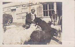 AK Foto Hirte Mit Schafen - Südosteuropa - Ca. 1915 (39441) - Europa