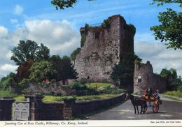Jaunting Car At Ross Castle , Killarney , Co. Kerry , Ireland - Kerry