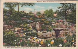 New York Saratoga Springs Wishing Well At Petrified Sea Gardens Curteich - Saratoga Springs