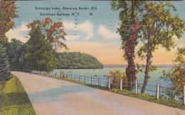 New York Saratoga Springs View Of Saratoga Lake Showing Snake Hill 1941 - Saratoga Springs