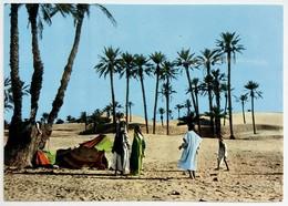 #657  Bedouin Camp In The Sahara Desert, South ALGERIA, North Africa - Postcard - Afrique