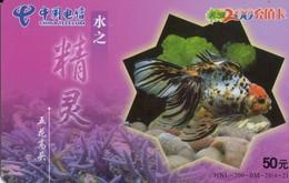 TARJETA TELEFONICA DE CHINA. PECES. FISH. HNL-200-BM-28(4-2). (547) - Peces