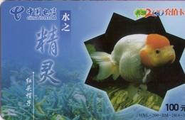 TARJETA TELEFONICA DE CHINA. PECES. FISH. HNL-200-BM-28(4-3). (548) - Peces