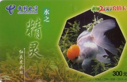 TARJETA TELEFONICA DE CHINA. PECES. FISH. HNL-200-BM-28(4-4). (549) - Peces