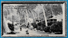 "IMAGE - Dans L' ILE De MAKATOA Océanie Iles Tuamotou °  Chocolat Suchard ""Collection Coloniale"" * - Suchard"