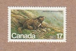 Vancouver Island Marmot, Endangered Wildlife - Canada 1980 MNH #883 - Lithography - 1952-.... Reign Of Elizabeth II