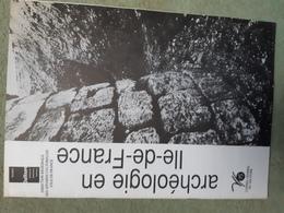 L'archéologie En Ile De France, 1990 - Archéologie