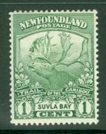 Newfoundland: 1919   Newfoundland Contingent   SG130     1c  [Perf: 14 X 13.9]    MH - Neufundland