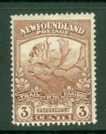 Newfoundland: 1919   Newfoundland Contingent   SG132     3c  [Perf: 14 X 13.9]    MH - Newfoundland
