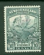 Newfoundland: 1919   Newfoundland Contingent   SG137     10c     MH - Newfoundland