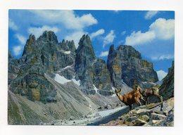 Dolomiti Di Brenta (Trento) - Torri Bianchi E Prati Nardelli - Non Viaggiata - (FDC14201) - Trento
