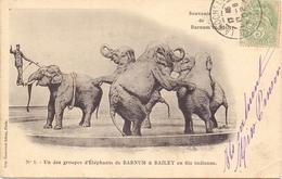PK - Circus Cirque Barnum & Bailey - Groupes D' Eléphants En File Indienne - 1902 - Cirque