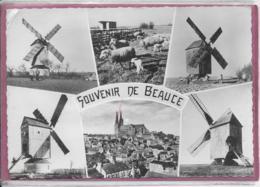 27.- SOUVENIR DE BEAUCE  ( Moulins ) - France