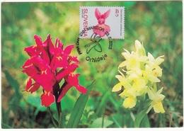 2005 ORHIDEJE MARIBOR  SLOVENIJA  MC MK MAXIMUM CARD FLOWERS FLORA - Slovenia