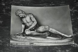 5154   ROMA, MUSEI CAPITOLINI, GALLO MORENTE - Musei
