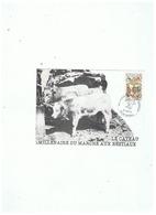 MILLENAIRE DU MARCHE AUX BESTIAUX à LE CATEAU (NORD) 22 09 1987 - Le Cateau