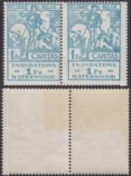 BELGIQUE 1926 COB 238 EN PAIRE VARIETE DE PIQUAGE    (DD) DC-2156 - Variétés Et Curiosités