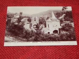 VILLERS-devant-ORVAL  -  Vue Générale Des Ruines - Florenville