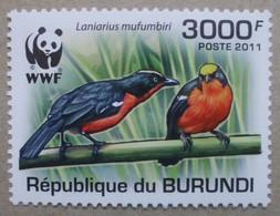 Burundi     WWF      2011       ** - W.W.F.