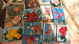 120 CPM Sur Les Roses; - Cartes Postales