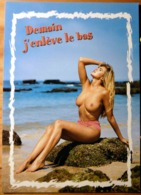 PIN UP TOPLESS SEINS NUS HUMOUR DEMAIN J'ENLEVE LE BAS PHOTO VLOO - Pin-Ups