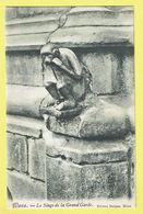 * Mons - Bergen (Hainaut - La Wallonie) * (Edition Balasse) Le Singe De La Grand'Garde, Monkey, Aap, Statue, Rare - Mons