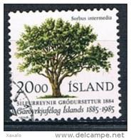 Iceland 1985 - Tree - 1944-... Republik
