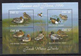 B/F - M/S - IRLANDE - IRLAND - EIRE - OISEAUX - VÔGEL - BIRDS - DUCKS - CANARDS - ENTEN - 1996 - - Blocs-feuillets