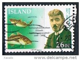 Iceland 1989 - Used - 1944-... Republik