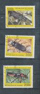 Coléoptères - Guinée (1958-...)