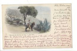 21491 -  Nice Paysanne Des Environs De Nice  En 1899 N° 23 Ane - Straßenhandel Und Kleingewerbe