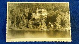 Bled Kraljevi Dvorec Suvobor Slovenia - Slovenia