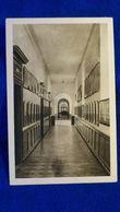 Malonne Institut St-Berthuin Un Couloir Belgium - Belgio