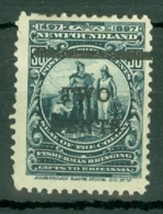 Newfoundland: 1920   Surcharge   SG144     2c On 30c      MH - Newfoundland