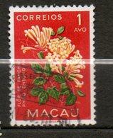 MACAO Feu D Artifice 1953 N°363 - Macao