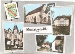 Montaigu Le Blin Multivues - France