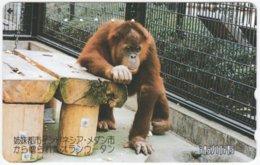 JAPAN I-720 Magnetic NTT [110-139995] - Animal, Monkey - Used - Japan